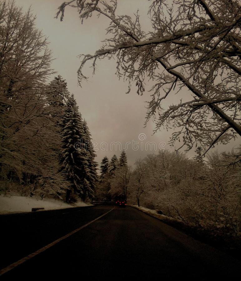 Wymarzona zima zdjęcie stock