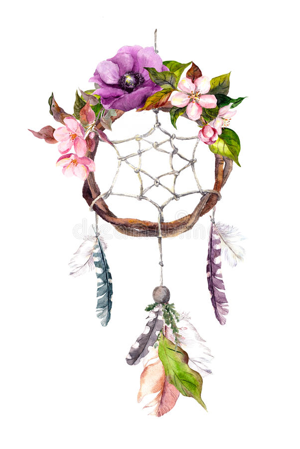 Wymarzony łapacz - piórka, kwiaty Akwarela w boho stylu ilustracja wektor