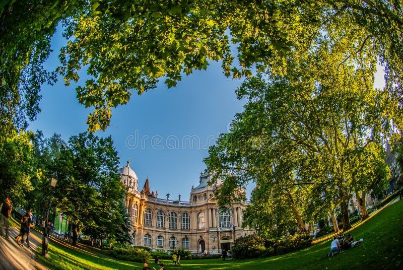 Wymarzony grodowy Budapest z widokiem od parka obrazy royalty free