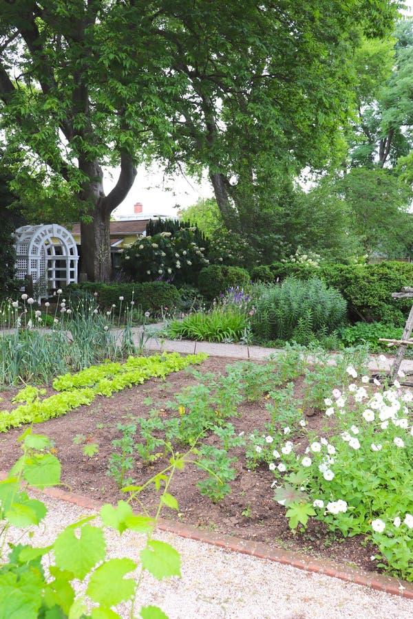 Wymierzeni kwiatów łóżka i Metodyczny flancowanie Robią dla Pięknego kwiatu Jarzynowego ogródu i fotografia stock