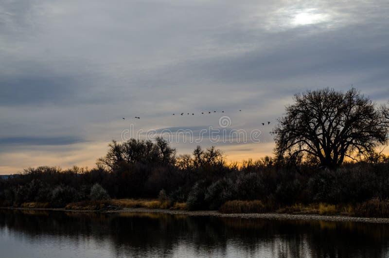Wyoming ranku rzeki wschód słońca obraz royalty free