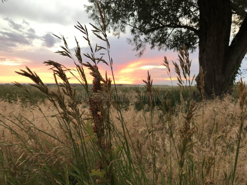 Wyoming-Sonnenuntergänge lizenzfreies stockbild
