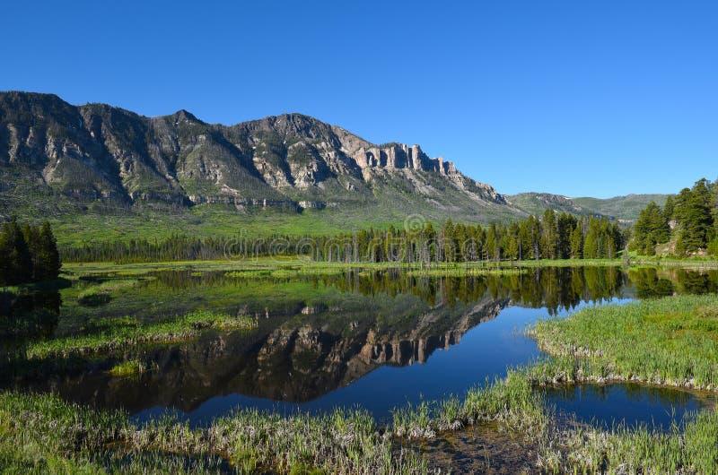 Wyoming utsikt längs chefen Joseph Scenic Byway royaltyfri foto