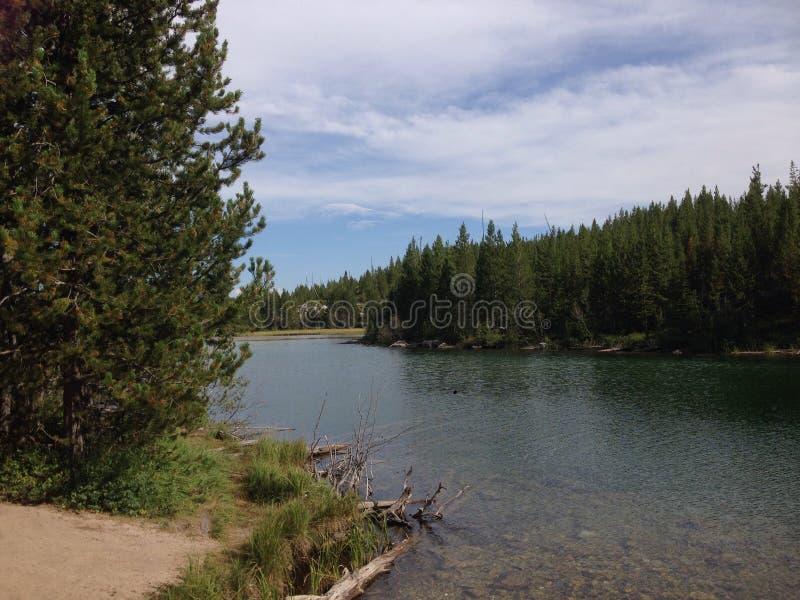 Wyoming Yellowstone lizenzfreie stockfotos