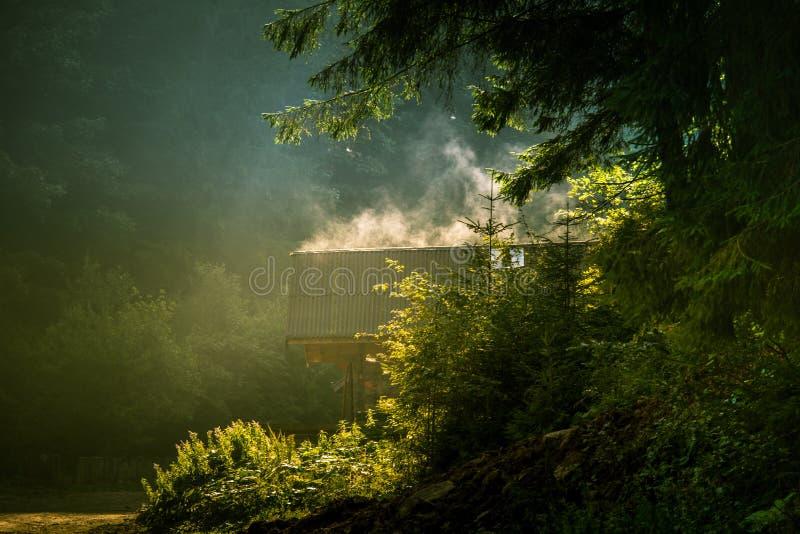 Wyparowywać wilgoć od domowego dachu w Rumuńskich lasach obraz stock