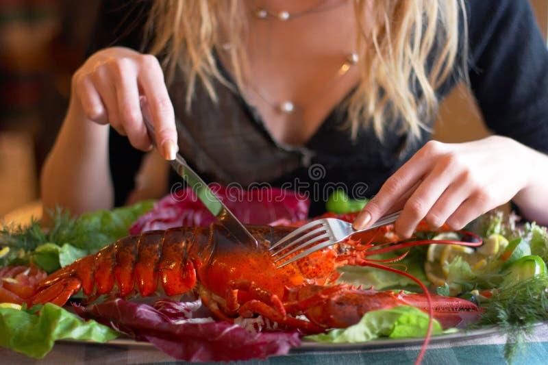 wyparzonych homar fotografia stock