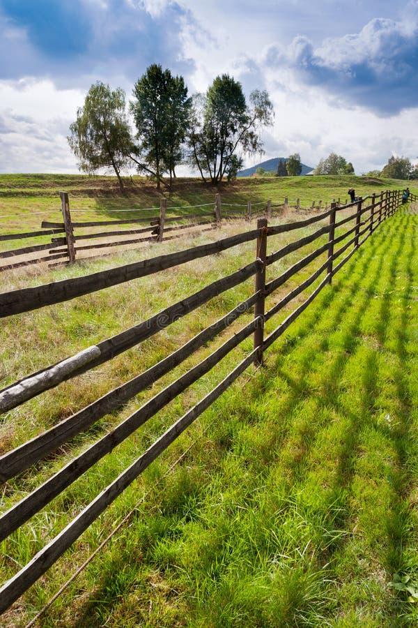 Wypasy i łąki blisko Vysoka Lipa, Jetrichovice region, czech Szwajcaria, republika czech zdjęcie royalty free