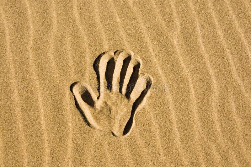 wypatroszone ręka piasku obraz royalty free