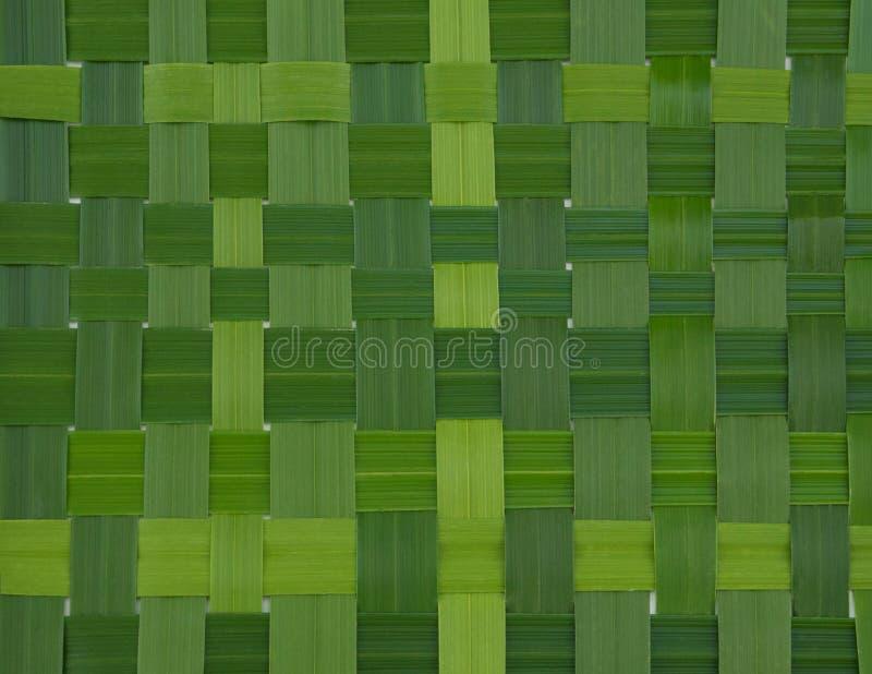 Wyplatająca zieleń opuszcza teksturę obrazy stock