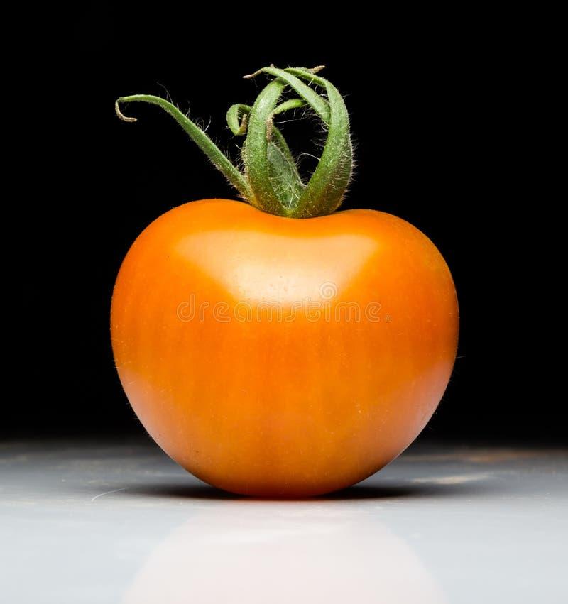 Wyprodukowany lokalnie Czerwony Świeży pomidor zdjęcie stock