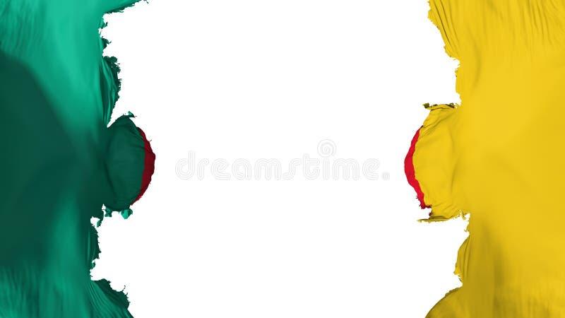Wysadzająca Cameroon flaga royalty ilustracja