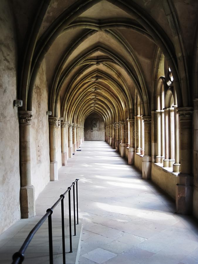 wysklepia gothic fotografia stock