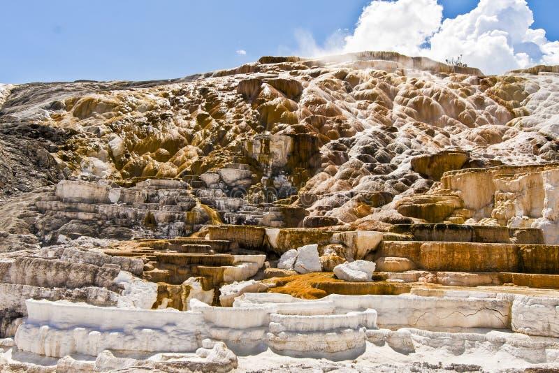 Wysoce Geotermiczny krajobraz Yellowstone park narodowy obraz royalty free
