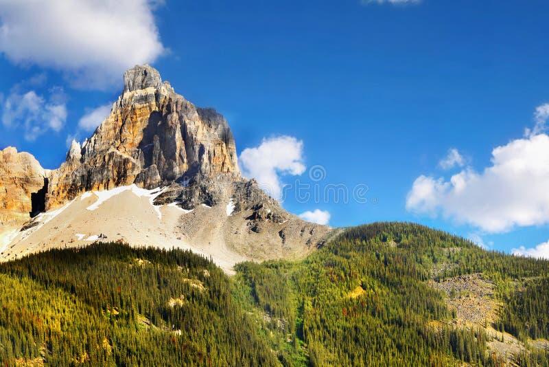 Wysoka Góra lasu krajobraz, Alberta Kanada obraz stock