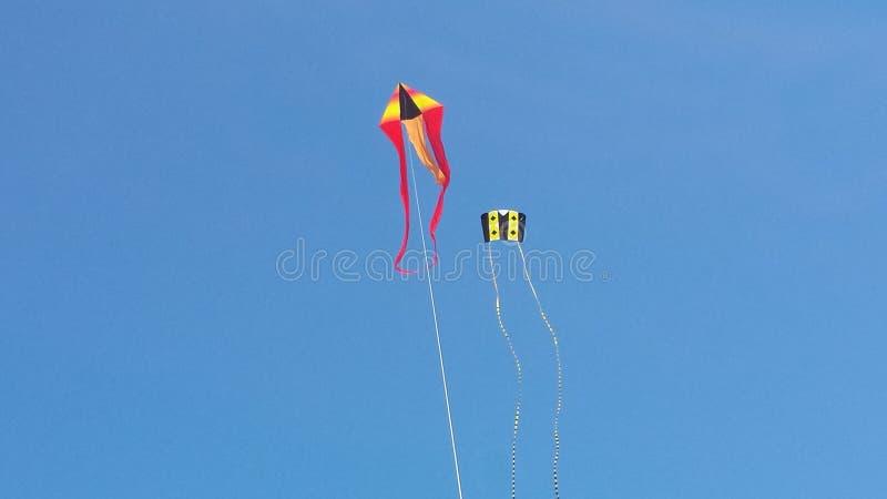 wysoka latawiec latająca zdjęcie royalty free
