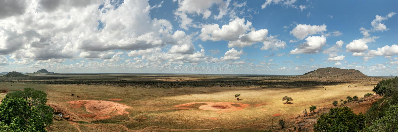 Wysoka rozdzielczość panorama płaska Afrykańska sawanna z dramatycznym c obraz stock