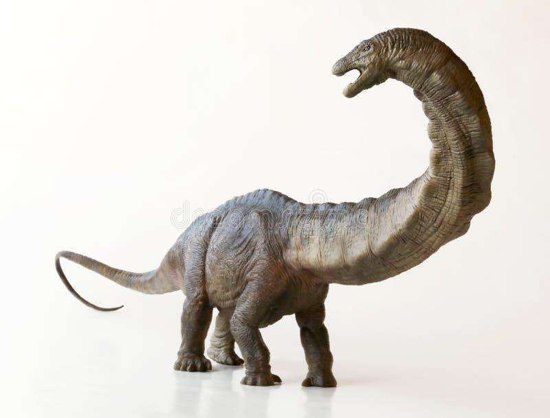 Wysoki Apatosaurus dinosaur lub Zwodniczo jaszczurka, fotografia royalty free