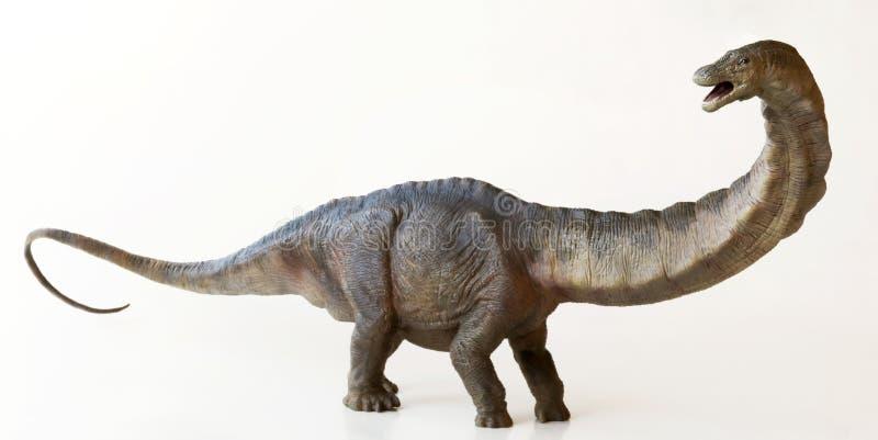 Wysoki Apatosaurus dinosaur lub Zwodniczo jaszczurka, zdjęcie royalty free