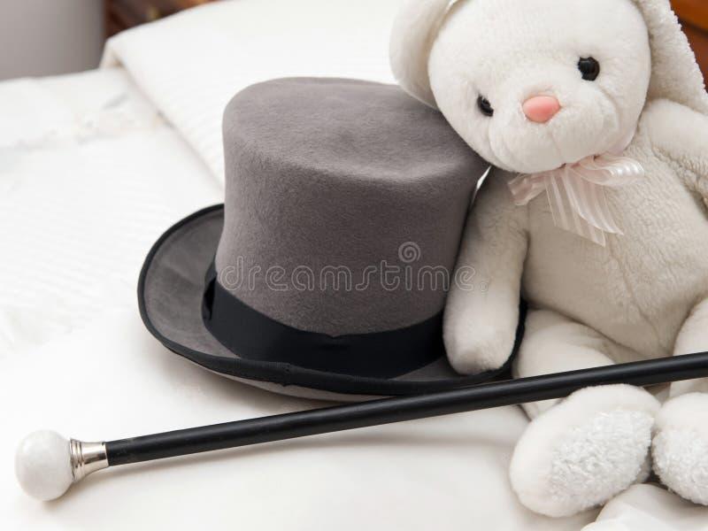 Wysoki hatt i chodzący kij zdjęcia royalty free