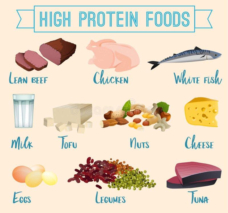 Wysoki - proteinowi foods ustawiający ilustracja wektor