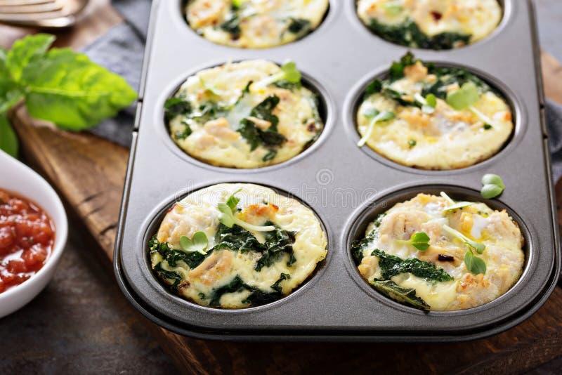 Wysoki - proteinowi jajeczni muffins z kale obrazy stock