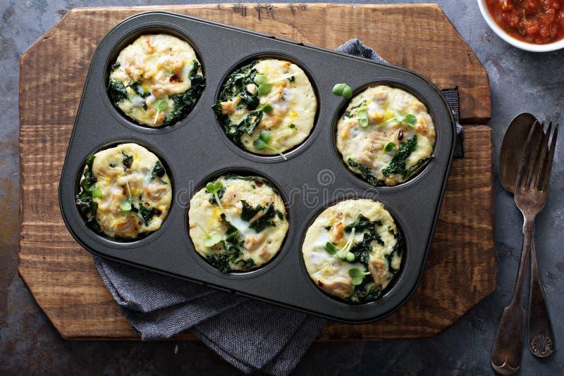 Wysoki - proteinowi jajeczni muffins z kale obrazy royalty free