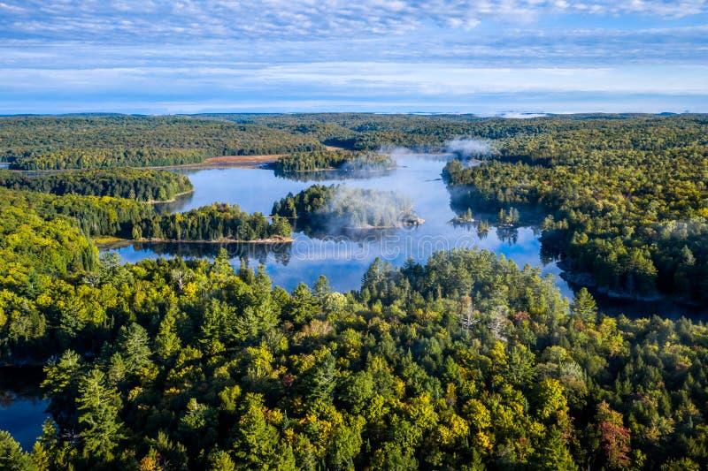 Wysokiego k?ta widok jezioro z mg?? i las obraz royalty free