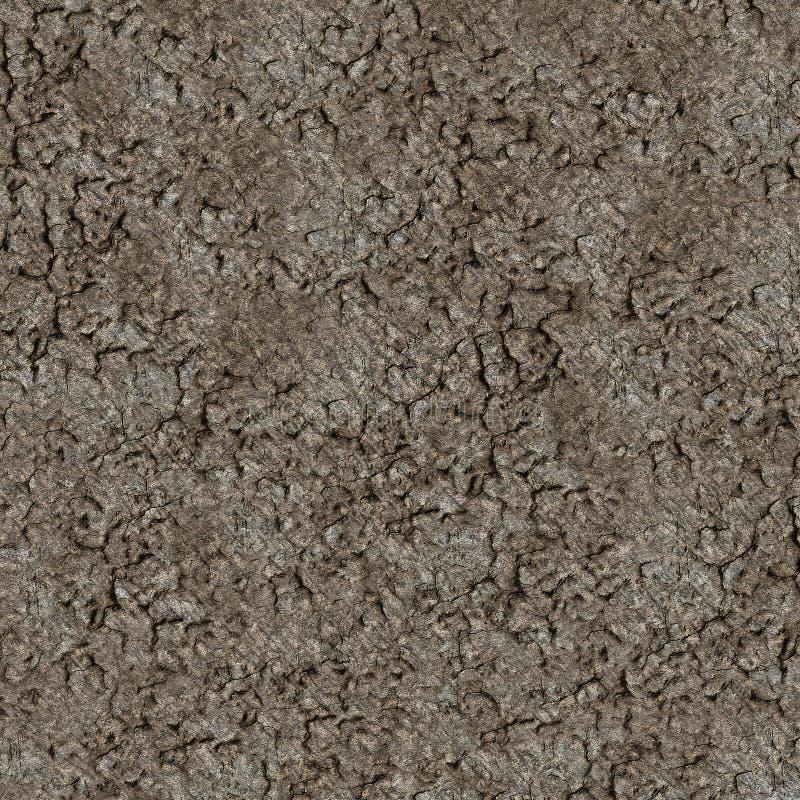 Wysokiej jakości glebowa tekstura zdjęcia royalty free