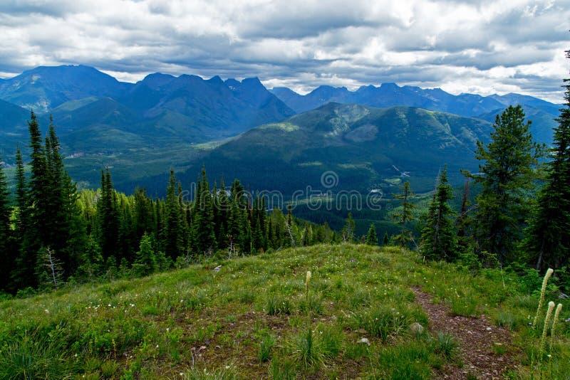 Download Wysokość Up Na Stanton Grani Obraz Stock - Obraz złożonej z zalesiony, kwiaty: 53793665