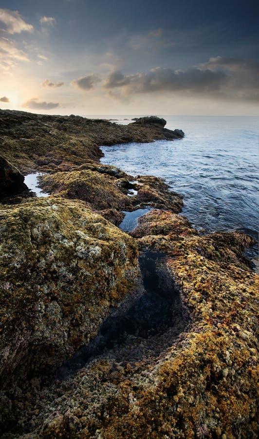 wyspa kanaryjska natura zdjęcie royalty free