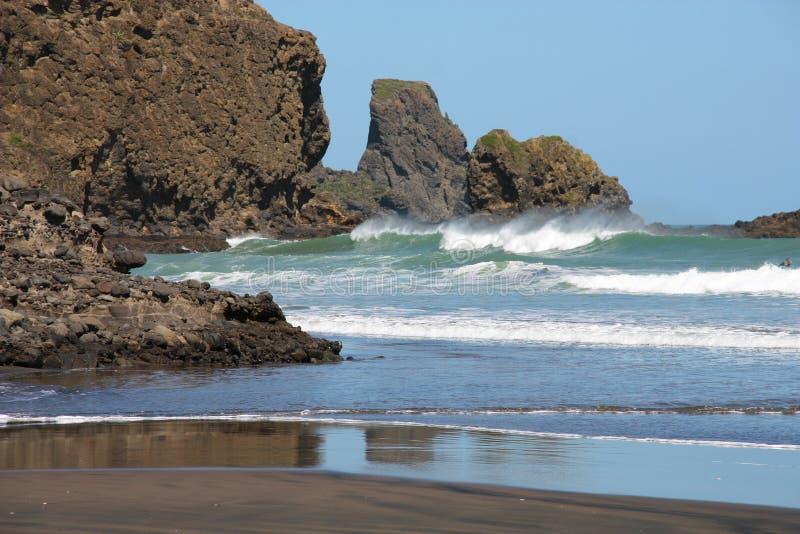 wyspa nowy północny Zealand zdjęcie stock