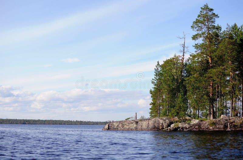Wyspa przerastająca z sosnami zdjęcie royalty free