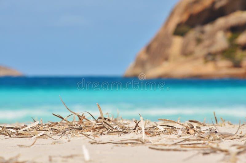 wyspa tristana zdjęcie stock