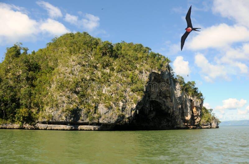 wyspa tropikalna obrazy stock