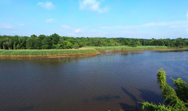 Wyspa widok od wzrosta rzeki i lasu przy zmierzchem, obraz stock