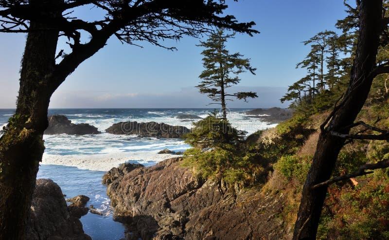 wyspy śladu ucluelet Vancouver fotografia stock