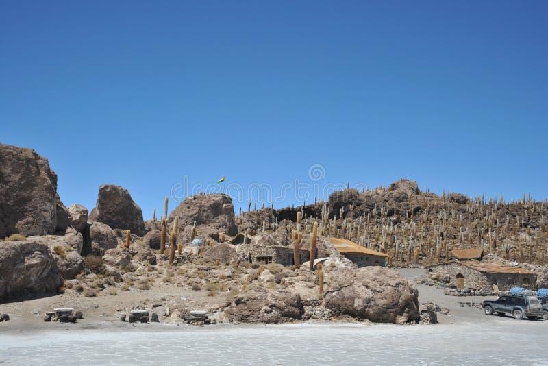 Wyspy inka Wasi - kaktusowa wyspa fotografia royalty free