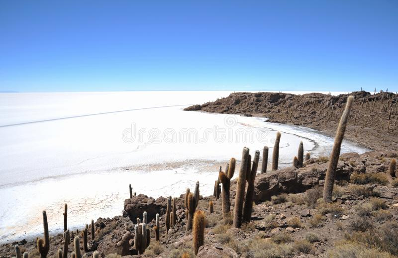 Wyspy inka Wasi - kaktusowa wyspa obrazy stock