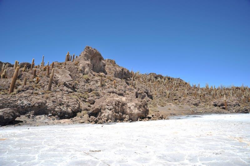 Wyspy inka Wasi - kaktusowa wyspa obrazy royalty free