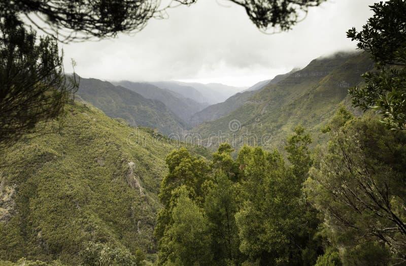 wyspy Madeira góry fotografia stock