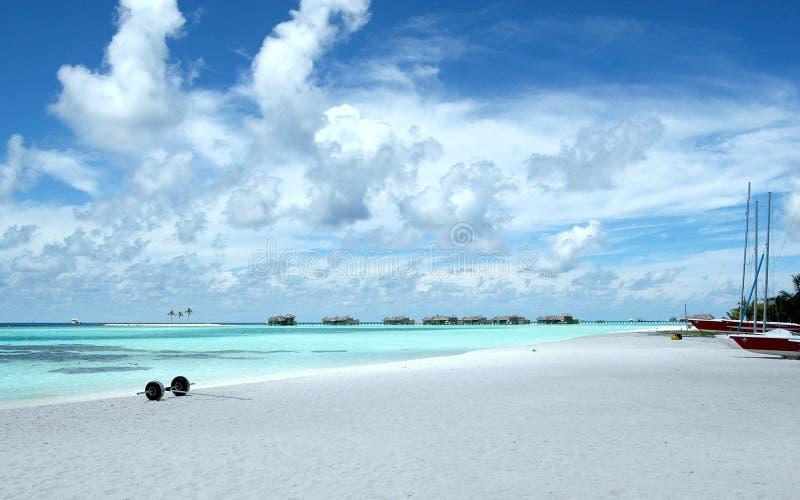wyspy maldive fotografia royalty free