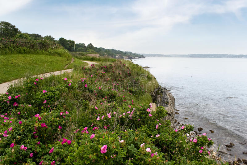 wyspy Newport rhode linia brzegowa obraz stock