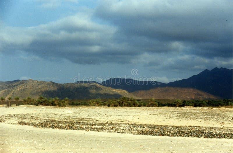 wyspy soqotra zdjęcie royalty free