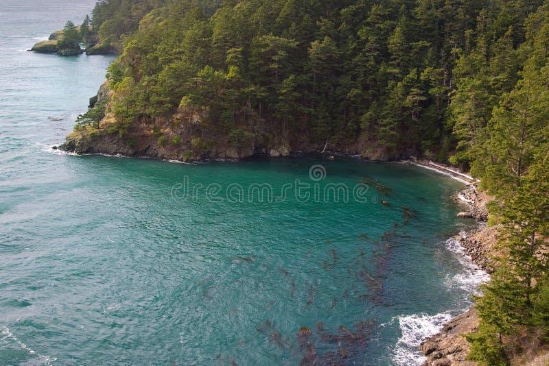 wyspy stan Washington whidbey zdjęcie stock