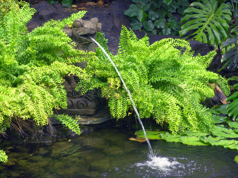 wystrzykanie wody zdjęcia stock