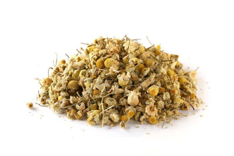 Wysuszeni chamomile guziki odizolowywający na białym tle zdjęcie stock