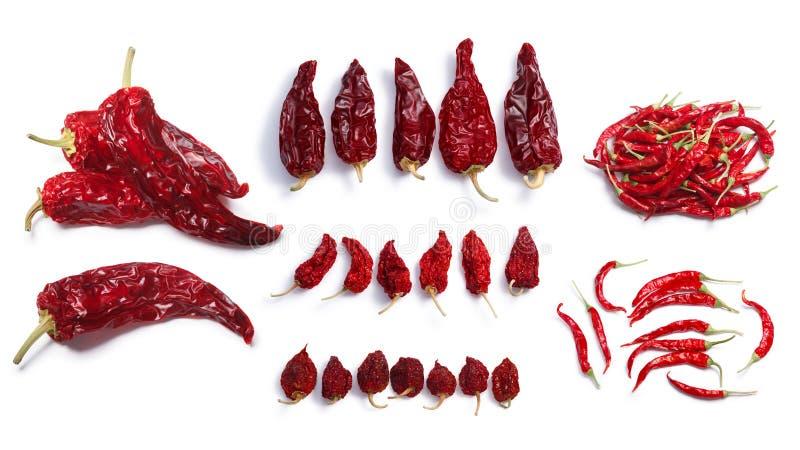 Wysuszeni chile pieprze zdjęcia royalty free