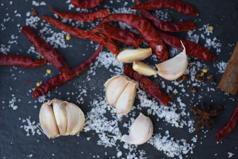 Wysuszeni chili czosnku ziele i pikantność z solą na ciemnym tle obrazy stock