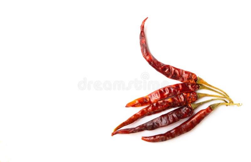 Wysuszeni chili pieprze na białym tle fotografia stock