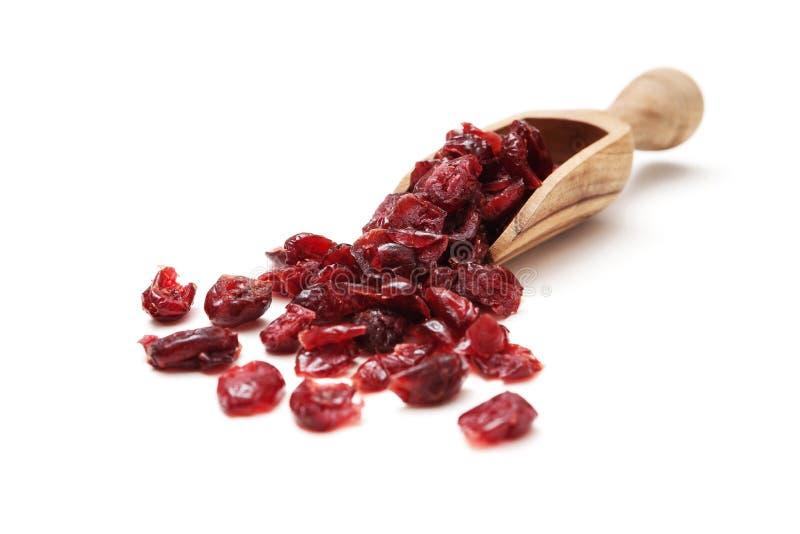 Download Wysuszeni Cranberries obraz stock. Obraz złożonej z świeży - 28951835